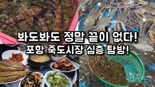 전국 최대규모 포항 죽도시장 심층 탐방!! 인당 550…
