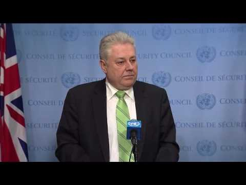 Volodymyr Yelchenko (Ukraine) on the situation in Georgia - Media Stakeout