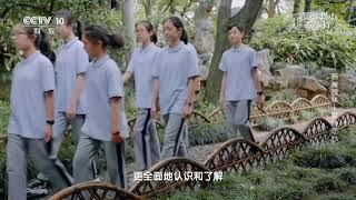 [跟着书本去旅行]沧浪亭的漏窗艺术| 课本中国