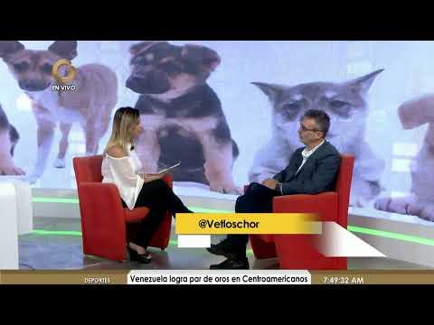 Entre Noticias 4/8