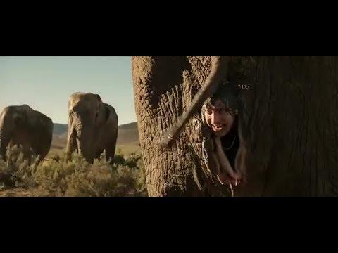 Смешная сцена со слонами ( братья оказываются в интимном месте слона )\\ Братья из Гримсби