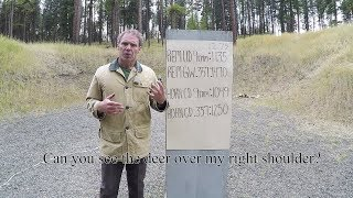 Personal protection:   9mm vs. .357Magnum.