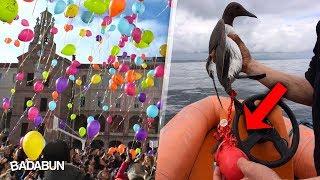 Los globos que sueltas no van al cielo. Matan animales