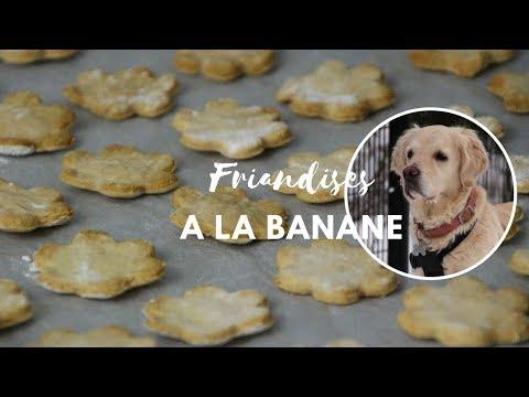 tuto---biscuits-pour-chien-à-la-banane