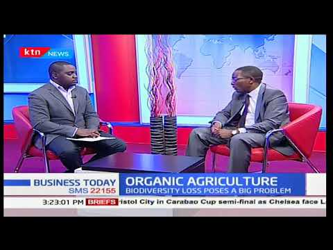 Bio Vision Africa, Executive Director-Dr David Amudavi: Organic farming