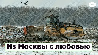 Из Москвы С Любовью: Как Столичный Мусор Отравит Поморскую Тайгу