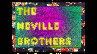The Neville Brothers - Never Needed No One - 1986 Santa Cruz