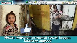 Тоок-Эчкисин карган кичинекей тоолук кыздын кызыктуу видеосу   Турмуш Баяны