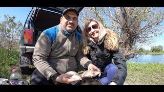 Ловля карася на пикер Отличная рыбалка выходного дня