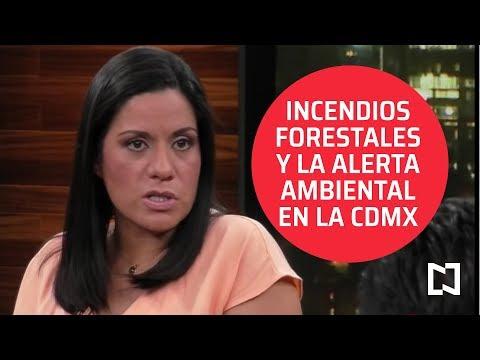 Incendios forestales en México y la alerta ambiental en la CDMX - Punto y Contrapunto