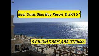 Египет 2021 Reef Oasis Blue Bay 5 ЛУЧШИЙ ПЛЯЖ 2021 ДЛЯ ОТДЫХА ЗИМОЙ