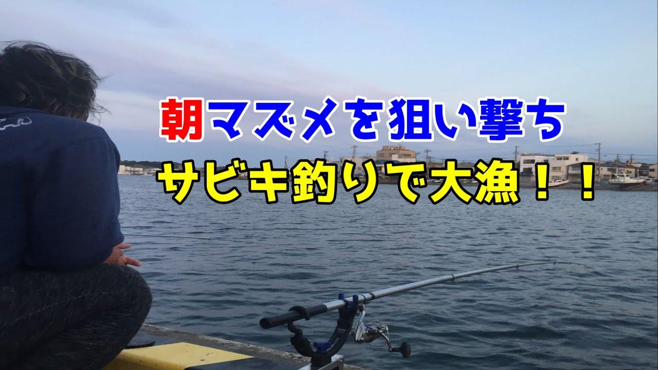 朝マズメを狙い撃ちサビキ釣りで大漁!!