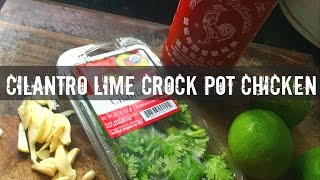 Easy Crock Pot Chicken Recipe- Gauge Girl Training