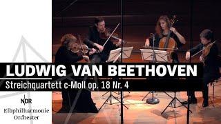 Ludwig van Beethoven: Streichquartett c-Moll op. 18 Nr. 4   NDR Elbphilharmonie Orchester