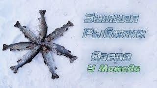#5. Ловля Форели. Зимняя Рыбалка в Алматы. Озеро У Мамеда.