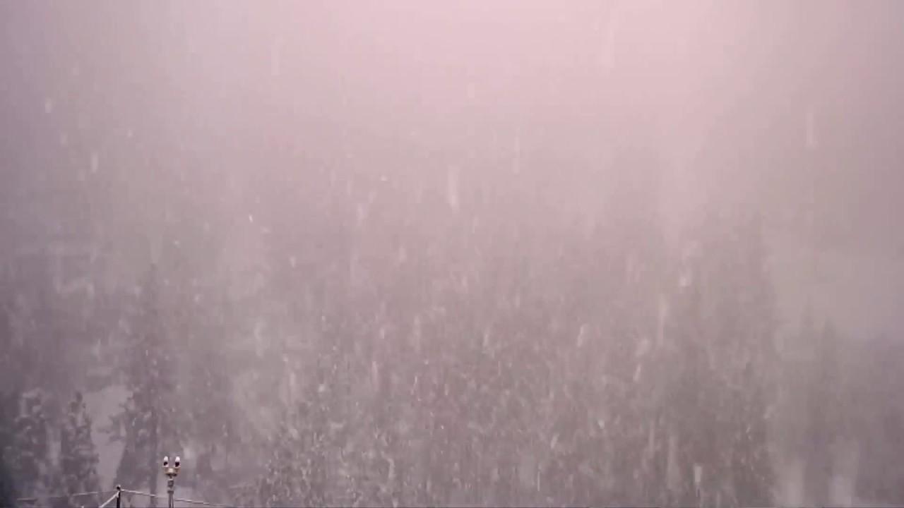 Snow falls in the Sierra