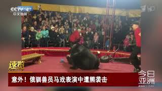 [今日亚洲]速览 意外!俄驯兽员马戏表演中遭熊袭击  CCTV中文国际