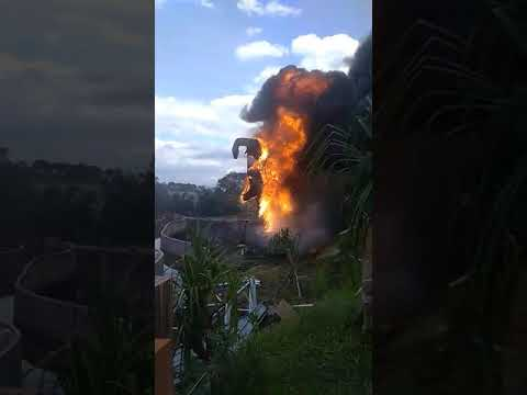 Dinosaurus Jatim Park Terbakar Youtube