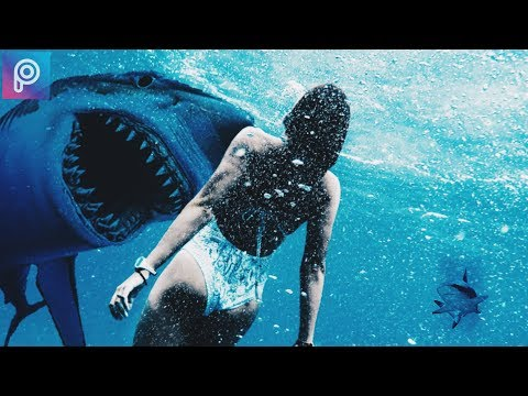 How to create a Megalodon Shark attack Photo with the Picsart App.