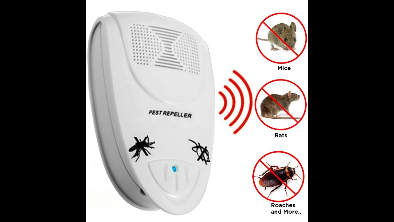 Review Rid Tech Ultrasonic Pest Repeller Repells