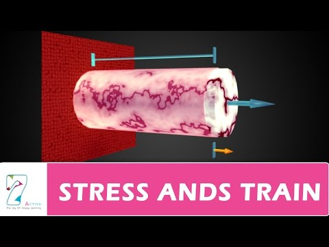 STRESS AND STRAIN_PART 01