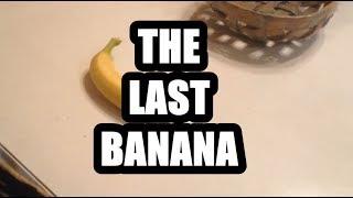 The Last Banana // Short Film