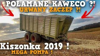 Kiszonka 2019 ✔ 4xCLAAS & STEYR [AGRO-ZORK] Silage ☆ Połamane Kaweco ?!☆ Najlepsza Ekipa !