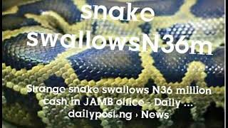 snake swallows N32 million naira cash in JAMB office