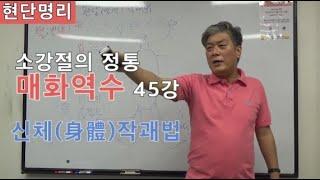 [현단명리] 매화역수 45강 신체(身體)작괘법