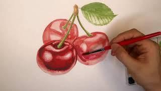 Cherry drawing watercolor 체리 그리기 수채화