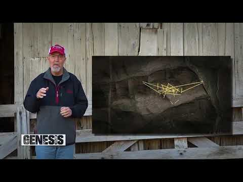 Deer Hunting Q & A: Why did this stange buck show on my hunting grounds? (#4QA) @GrowingDeer.tv