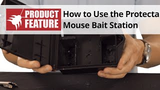 How to Use the Protecta Mouse Bait Station - Protecta Mouse Bait Station Review