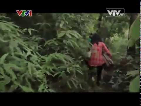 VTV kết nối   16 05 2014   Video  Đài truyền hình Việt Nam