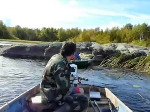 рыбалка в ленинградской области где клюет