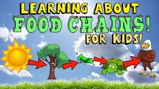 Learning About Food Chains