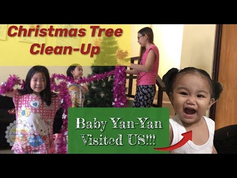 VLOG #13: CHRISTMAS TREE Clean Up and our CUTE LITTLE GUEST!!!