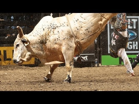 TOP BULL: Palm Springs earns a bull score of 45.50 (PBR)