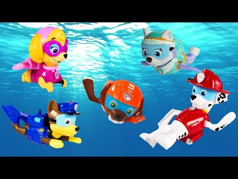 Paw Patrol Paddling Pups Swim in Barbie Dog Pup Pool Learn Colors Education
