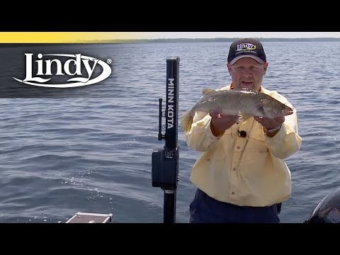 Spinner Fishing Made Simple