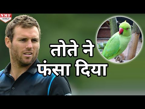 Cricketer Doug Bracewell पर भारी पड़ा उनका Parrot, पहुंचा दिया Jail