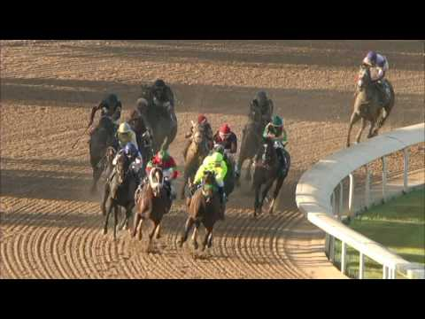 Andy Serling's Preakness Preview