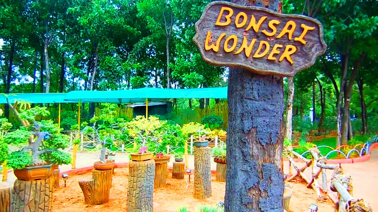 Desert Garden and Bonsai Wonder in NTR Gardens, Hyderabad | ComeTube HD  Video