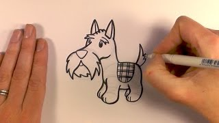 How to Draw a Cartoon Scottish Terrier