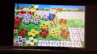 とびだせどうぶつの森 村をレア花だらけにする方法