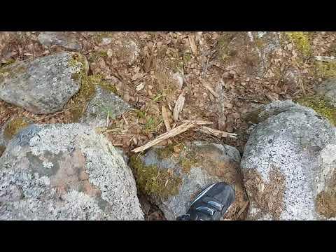 #19 Lustigknopp, Gästrikland, 402 m. Ascended 27 May 2017.