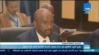 موجزTeN - وزير الري: قلقون من عدم توصل اللجنة الثلاثية لسد النهضة إلى اتفاق