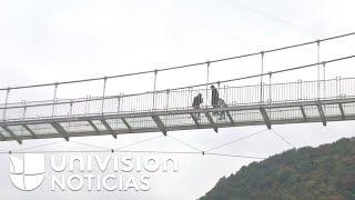 ¿Te atreverías a usar este puente o este tobogán hechos enteramente de vidrio?