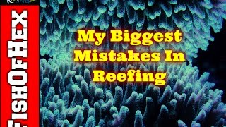 Top 5 Biggest Mistakes I've Made In Reefing