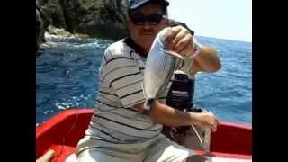Adrasanda Melanur balığı nasıl avlanıyor AVmarketicom