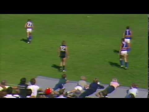 Kids on the roof of the interchange bench at Princes Park round 1 1985
